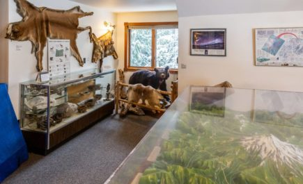 The focus of this gallery is the natural history of Mount Hood with special emphasis on the geology and fauna.  The three-dimensional terrain model is a must see.  Mountain climbing and the 10th Mountain Army Division exhibits are also located in this gallery.