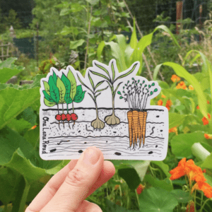Sticker - Vegetable Garden