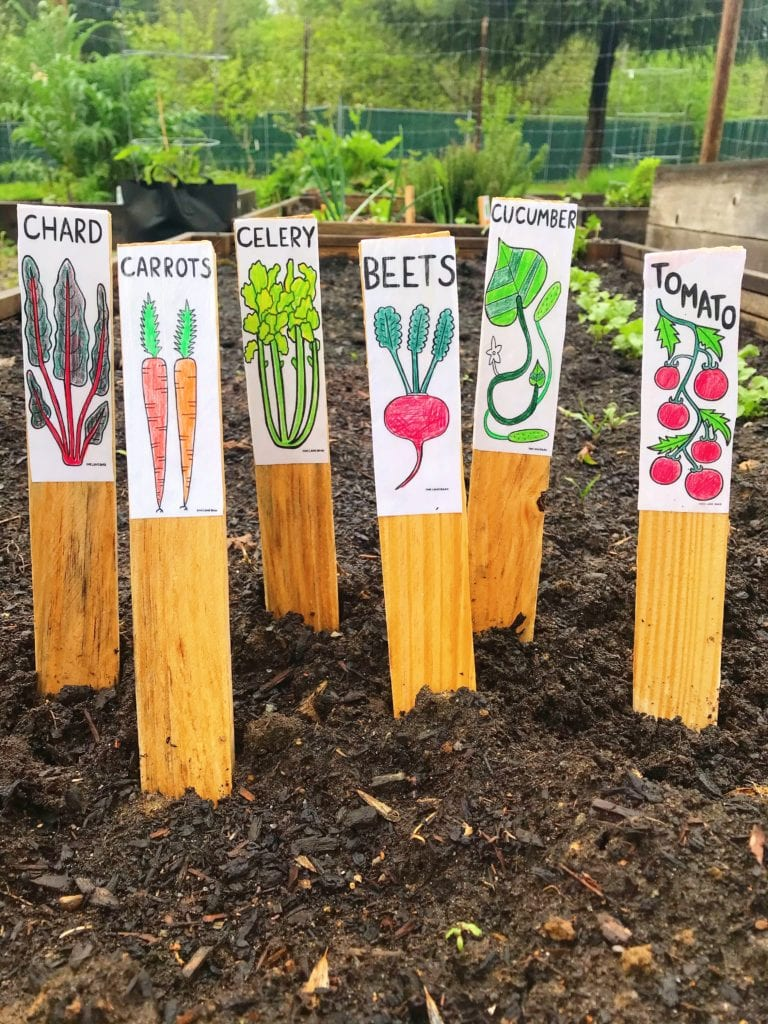 DIY Veggie and Herb Garden Stakes/Markers - 64 Individual Designs