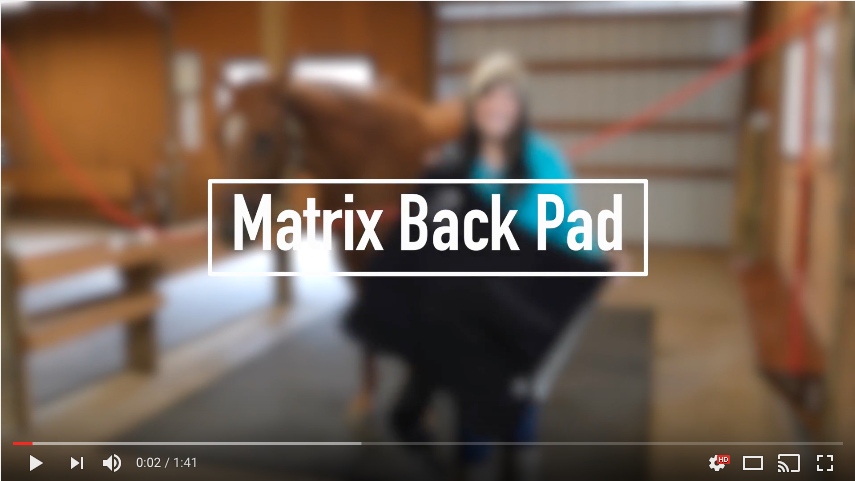 mtp-video-backpad-feature