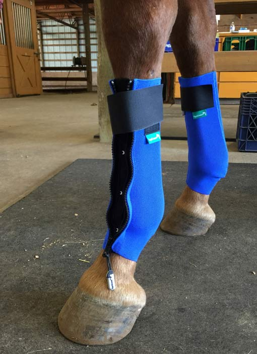 Equicrown FITS Compression Leg Wrap (LW-AC/FITS)