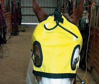 Thermotex Infrared TMJ Hood (T-TMJH)